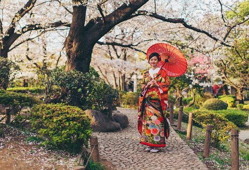 Beautiful Japanese Woman in Kimono