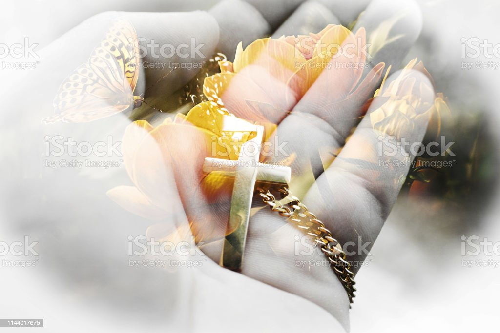 Beautiful Jesus Christ Art With Butterfly & Flower In Background