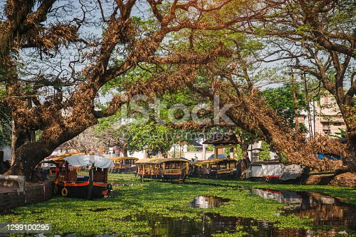 Travel to beautiful Kerala backwaters and enjoy palm tree landscape, Alappuzha, India
