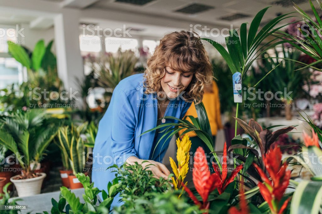 One woman at the flower shop, looking at flowers.
