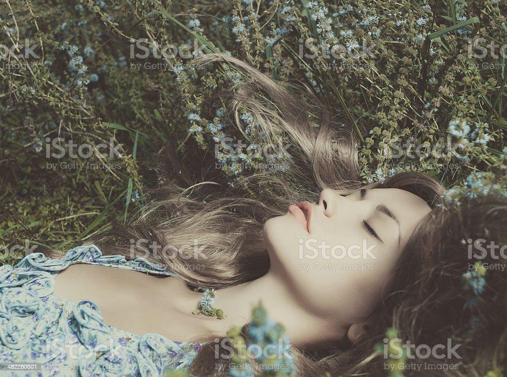 Beautiful lady lying amond flowers stock photo