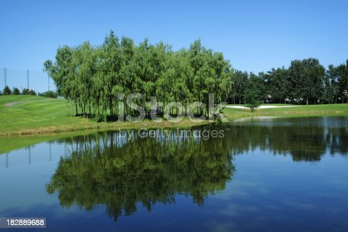 Beautiful landscape and lake with tree reflection near by golf course