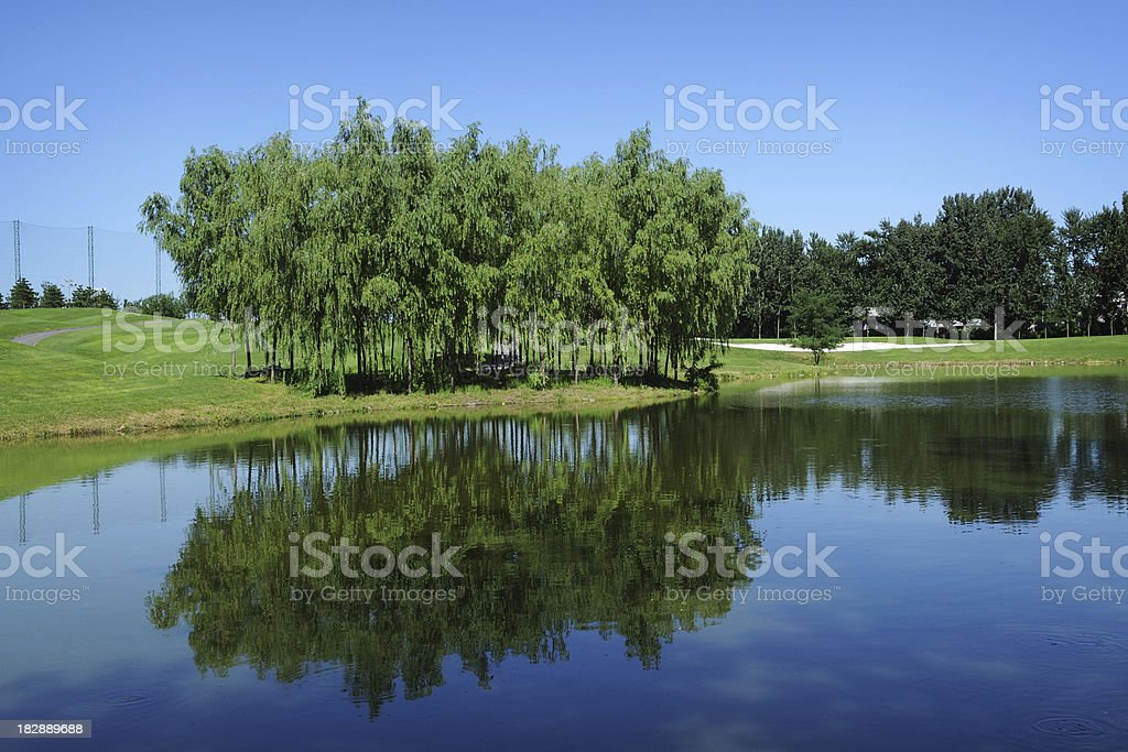 Beautiful Lake and Golf Course - XLarge stock photo