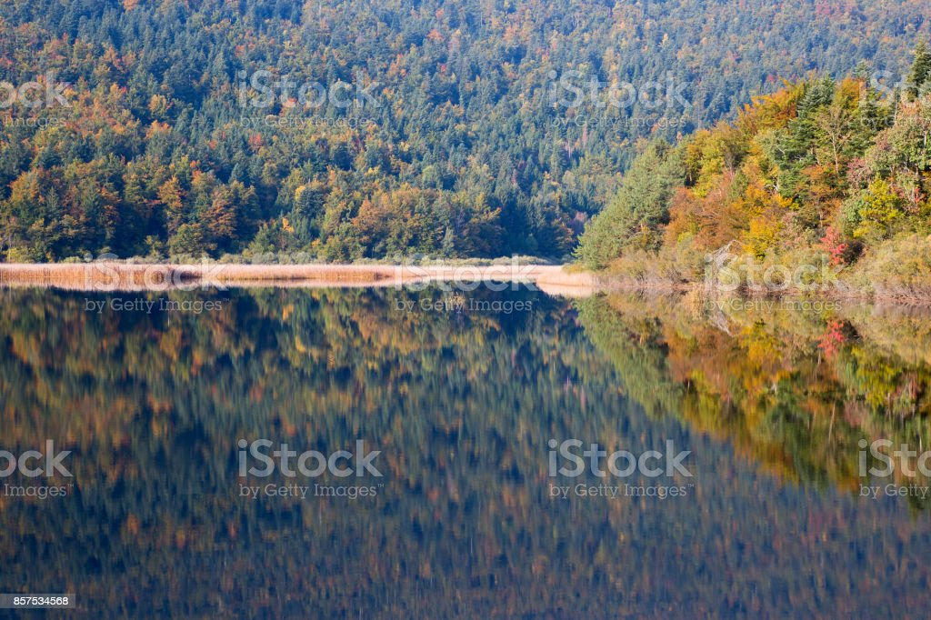 Beautiful Lake in autumn colors, Lake Cerknica, Slovenia stock photo