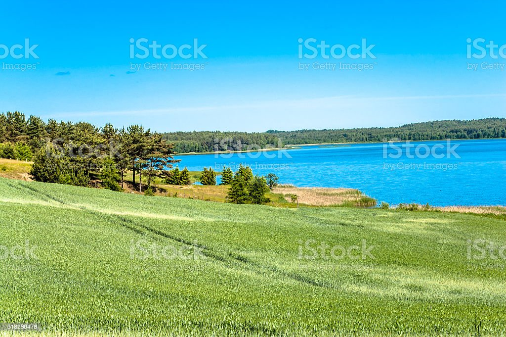 Beautiful lake landscape, fields of cereal, meadow and forest stock photo