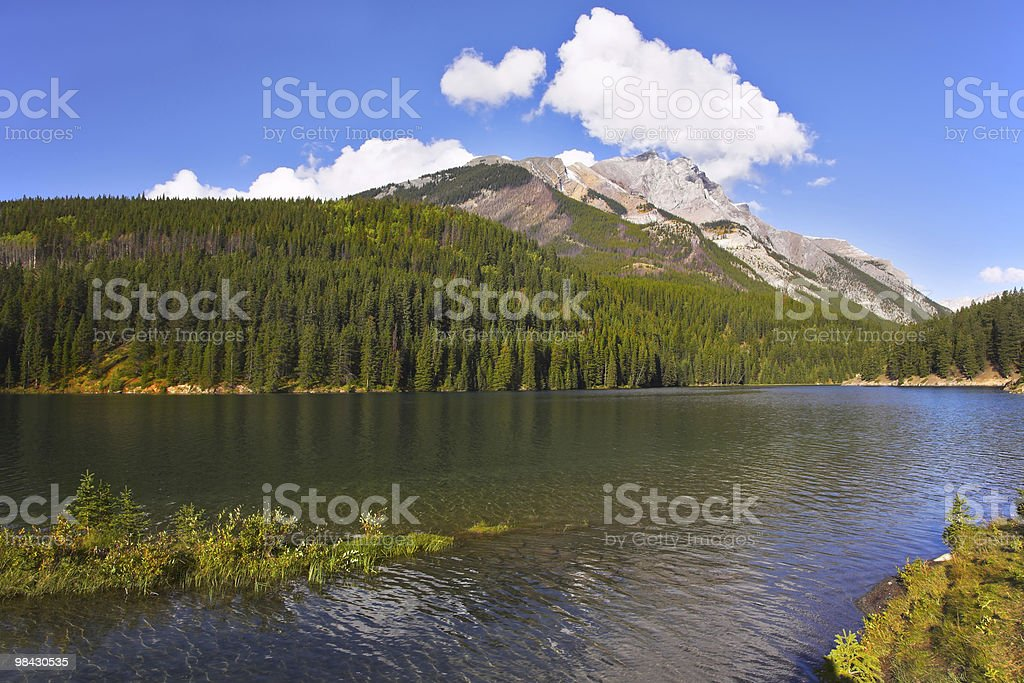 Beautiful lake, surrounded by a wood royalty-free stock photo