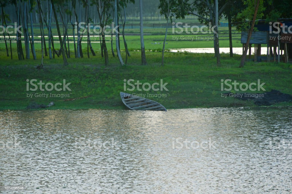 Beautiful lake water with trees around the bank stock photo