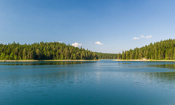 beautiful lake with islands covered by thick coniferous forests - lakeshore stock photos and pictures