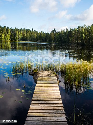 Beautiful Lakeside Views and Reflections - Lusi, Finland