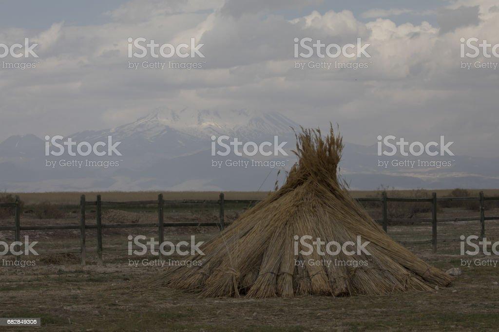Schöne Landschaft und Sultanmarshes (Paradiesvogel) neben Erciyes Berg, Kayseri Lizenzfreies stock-foto