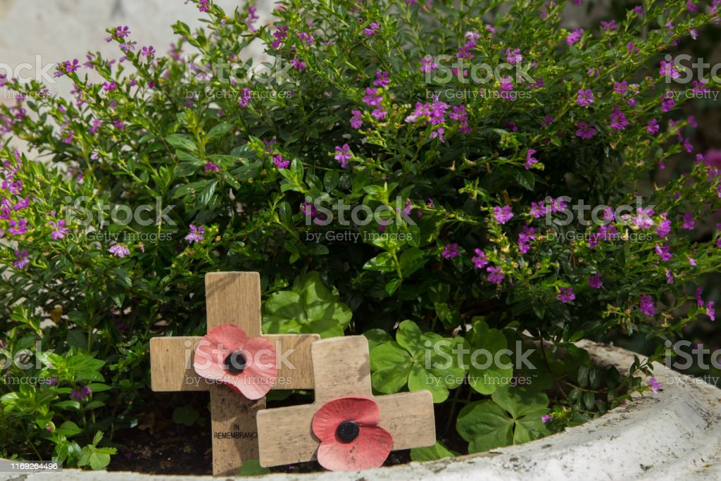Beautiful Landscape Garden Decoration At Borneo Island For