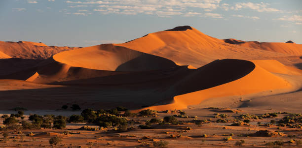 beautiful landscape Hidden Vlei in Namibia, Africa beautiful sunrise landscape, hidden Dead Vlei in Namib desert, Namibia, Africa wilderness landscape namib desert stock pictures, royalty-free photos & images