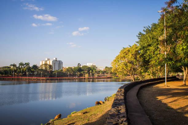 Beautiful landscape in city in the interior of Brazil - São José do Rio.Preto