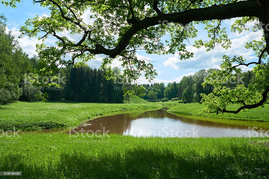 Beautiful landscape in Pavlovsk park. Saint Petersburg stock photo