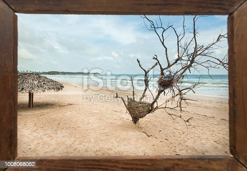 Beautiful landscape in photoframe for memory. Dry trees on sunny beach in tropical climate. Ocean waves and umbrella for tourists at sunny weather.