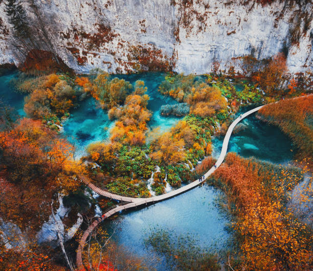Beautiful landscape in Plitvice Lake, Croatia Beautiful view with wooden trekking path, autumn colors trees, lakes and waterfall landscape in Plitvice Lakes in Croatia croatian culture stock pictures, royalty-free photos & images