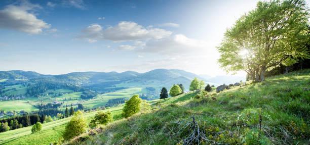 Bela paisagem no sul da Alemanha ao pôr do sol - foto de acervo