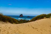 A Sandy Beach Leading to a Beautiful Ocean