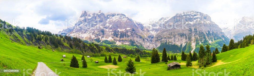 Beautiful Landscape of Grindelwald , Switzerland zbiór zdjęć royalty-free
