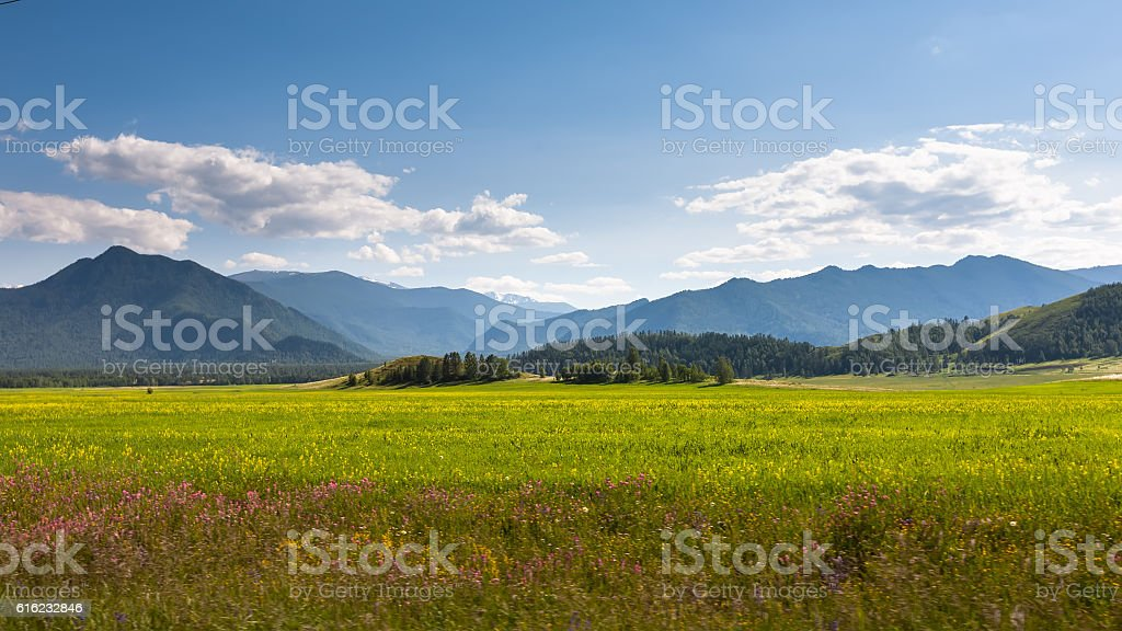Beautiful landscape of highlands of Altai mountains – Foto