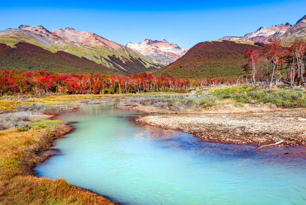 Schöne Landschaft Lenga Wald, Berge im Nationalpark Tierra Del Fuego, Patagonien – Foto