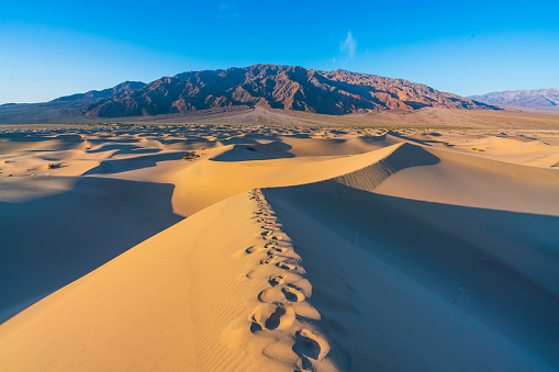 beautiful landscape  of  Mesquite Flat Sand Dunes. Death Valley National Park, California, USA.