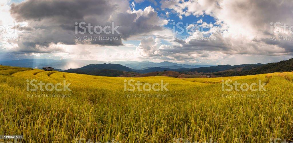 Prachtige landschap van de rijst terras uitzicht met wolken en zon balk in Chiang Mai, Noord Thailand - Royalty-free Architectuur Stockfoto