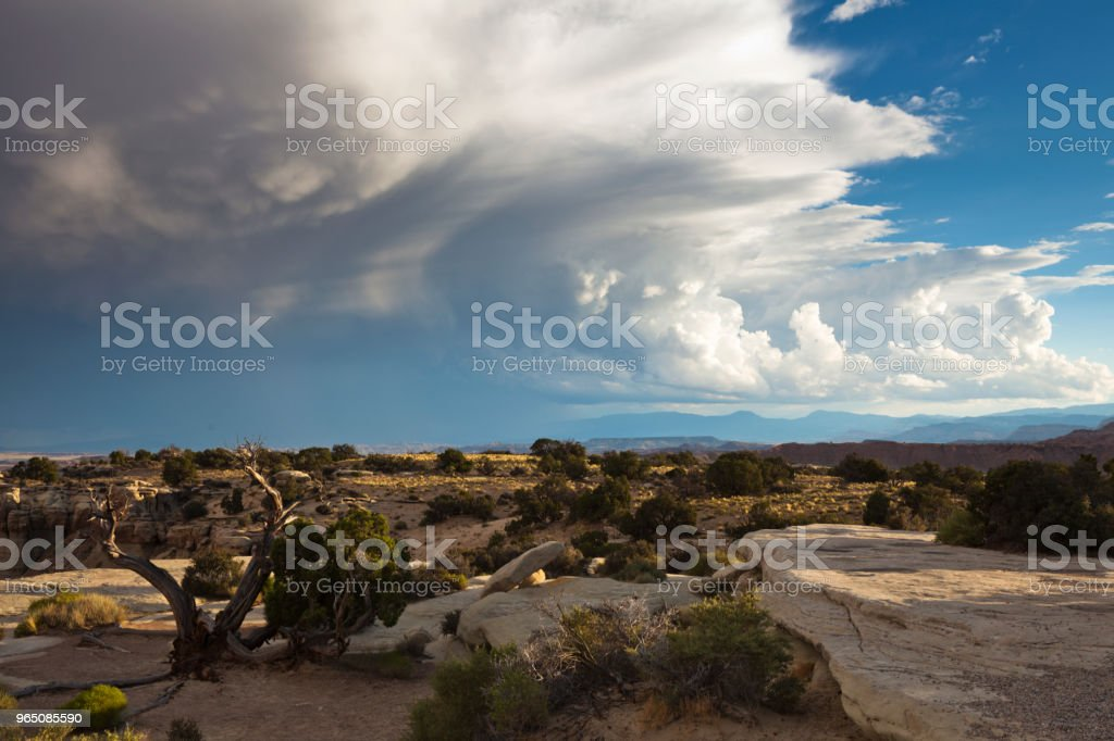 Beautiful Landscape of Rural Utah, USA royalty-free stock photo