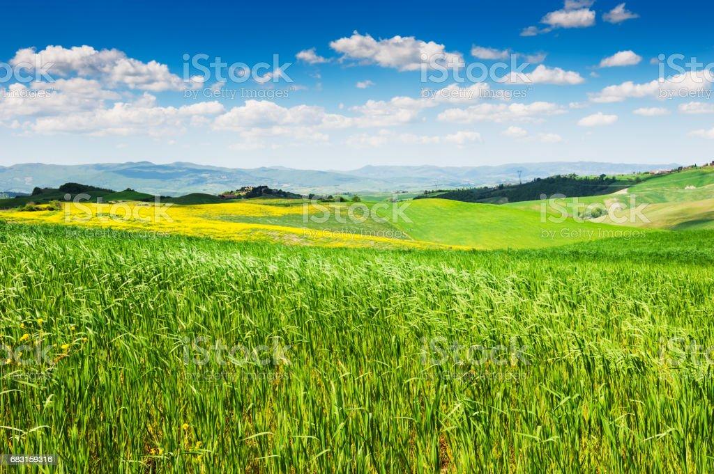 투 스 카 니, 이탈리아의 아름 다운 풍경 royalty-free 스톡 사진