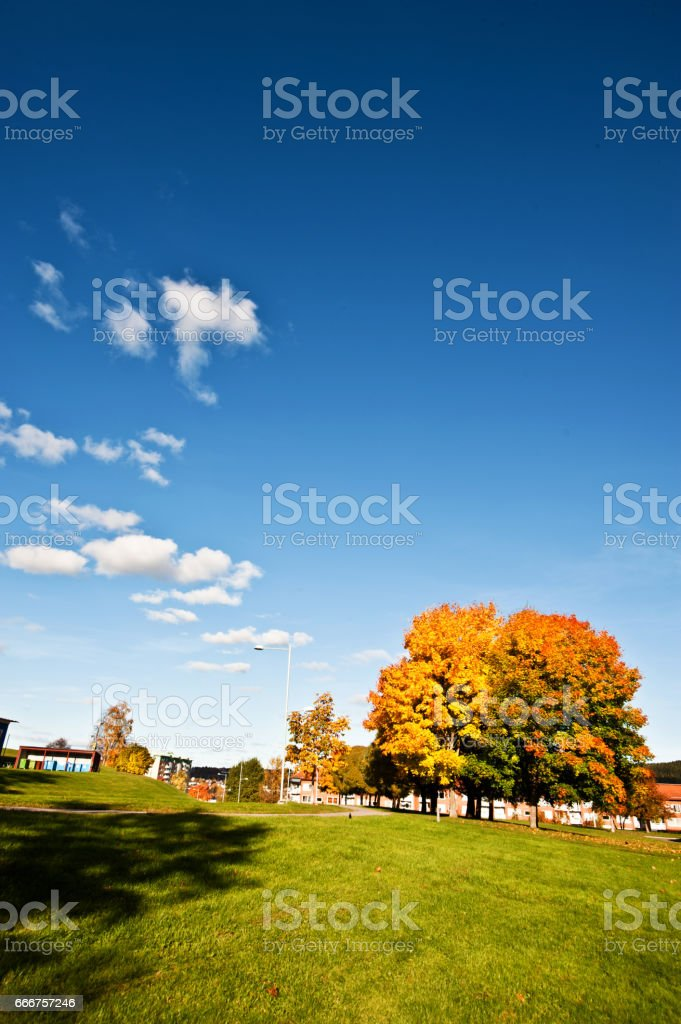 A Beautiful Landscape on a Sunny Summer Day foto stock royalty-free