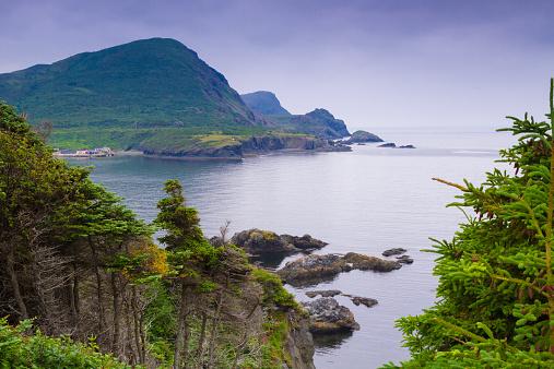 Beautiful  mountainous landscape with coastline  in Newfoundland, Canada