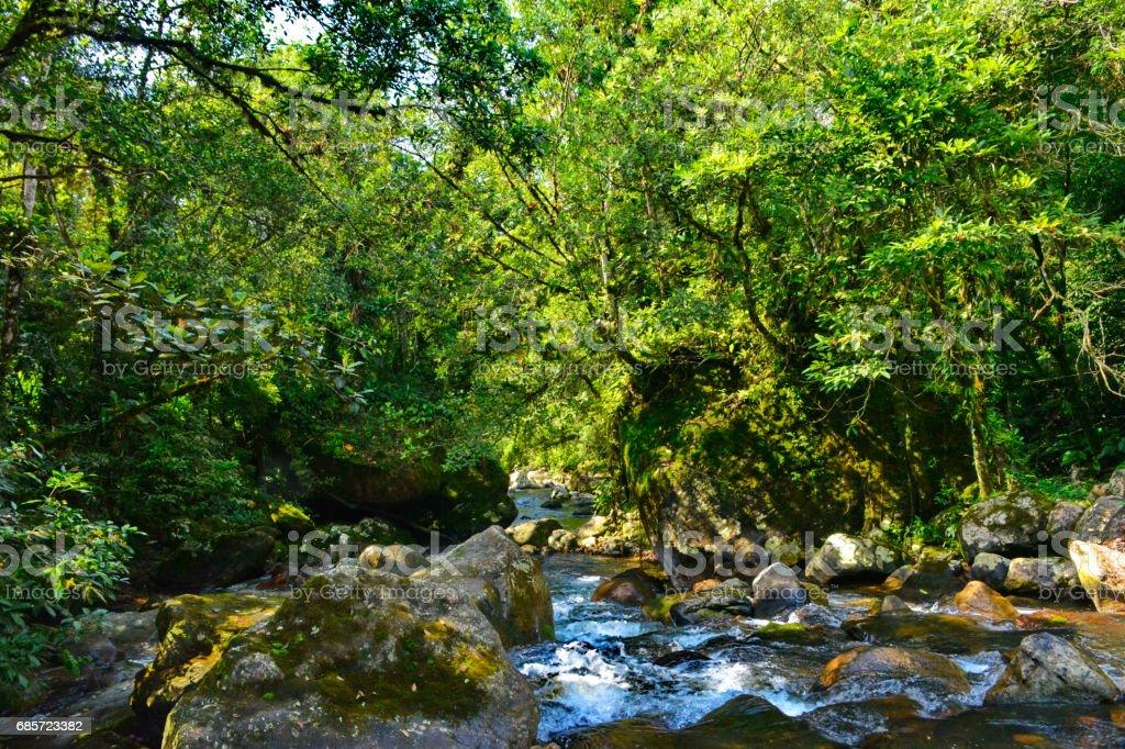 아름 다운 조 경 Piraí 강 royalty-free 스톡 사진