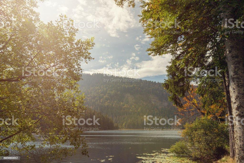 A beautiful landscape scene at the lake great arber, Bavaria stock photo