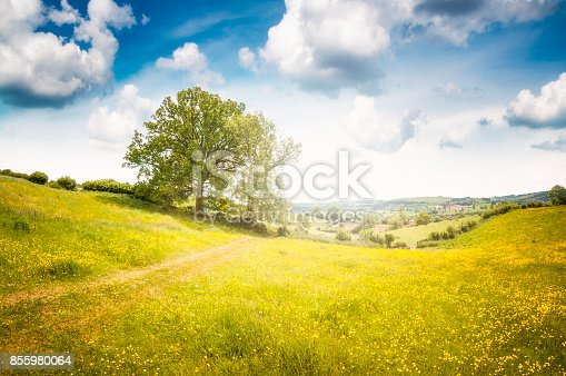 istock Beautiful Landscape View In Gloucestershire, England 855980064