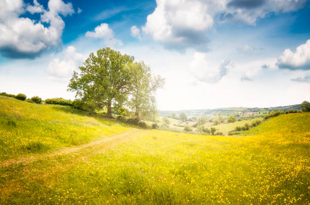 Beautiful Landscape View In Gloucestershire, England stock photo