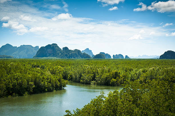 Beautiful Landscape View Of Phang Nga Bay In Thailand stock photo