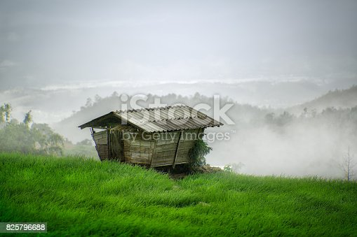 607590542istockphoto Beautiful landscape view of rice terraces and house 825796688