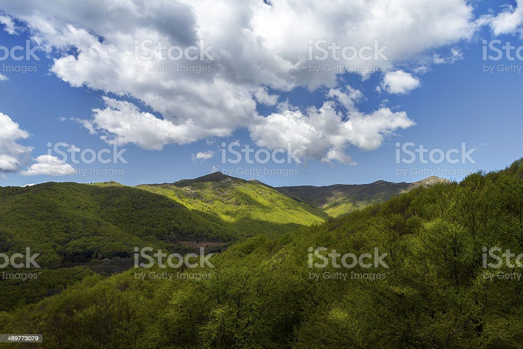Beautiful landscape with blue sky stock photo