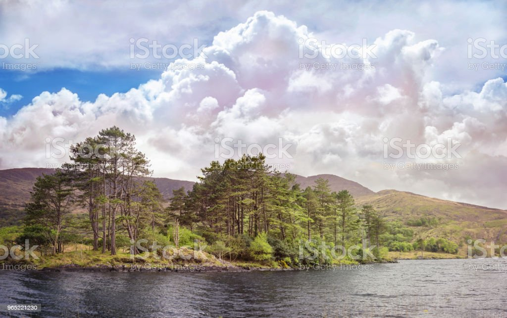 Beautiful landscape with body water and cumulus clouds royalty-free stock photo