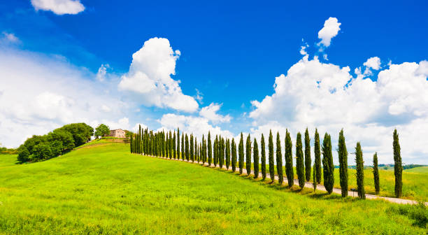 Beautiful landscape with house on hill in Val d'Orcia, Tuscany, Italy stock photo