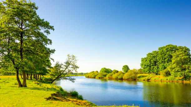 Beautiful landscape with river Summer landscape with river and trees lower saxony stock pictures, royalty-free photos & images