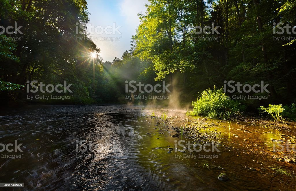 Beautiful landscape with summertime forest and river stock photo
