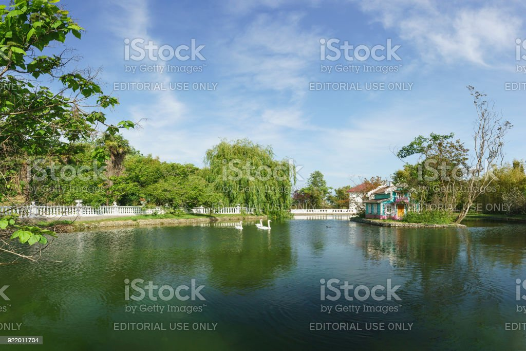 Beautiful landscape with swans-mute on the big pond of the city Park of the southern Spa town stock photo