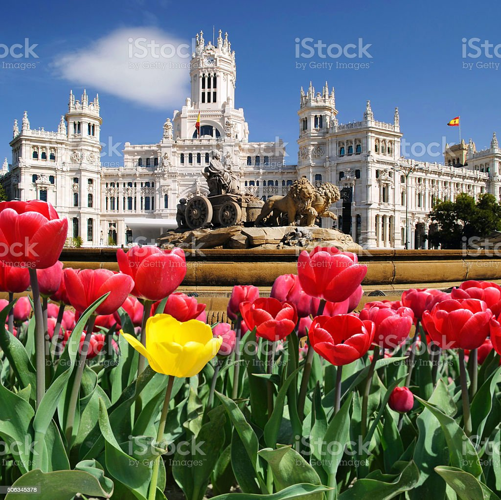 Beautiful landscape with tulips, sebelis fountain and Palace in stock photo