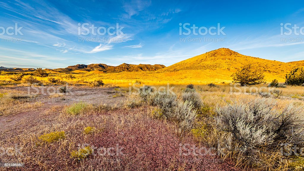 Beautiful landscape. Yellow hills, dry red earth. foto stock royalty-free
