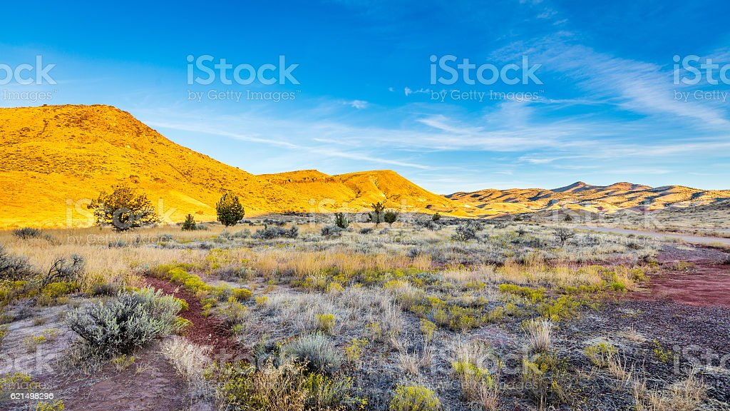Beautiful landscape. Yellow hills, dry red earth. Small bushes Lizenzfreies stock-foto