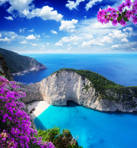 Beautiful lanscape of Zakinthos island Navagio beach, famous lanscape of Zakinthos island, Greece with bouganvilea flowers mediterranean sea stock pictures, royalty-free photos & images