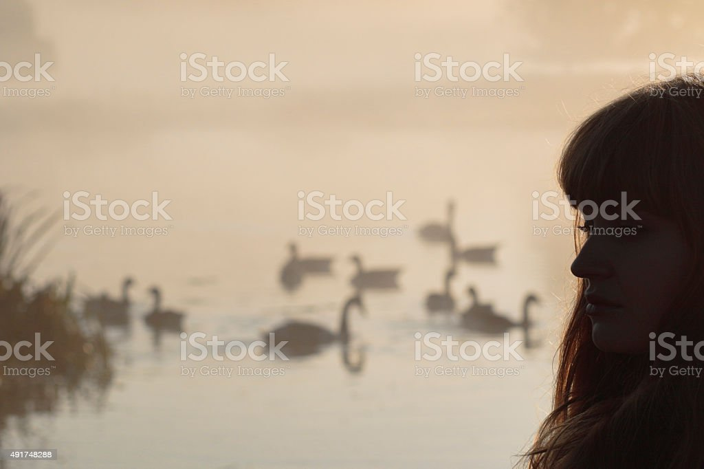 Head silhouette Latvian outdoor girl with Canada geese stock photo