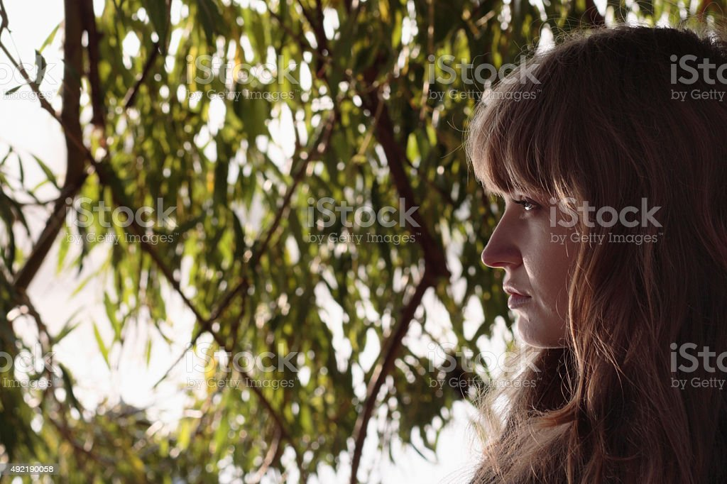 Profile beautiful Latvian outdoor girl by weeping willow tree stock photo