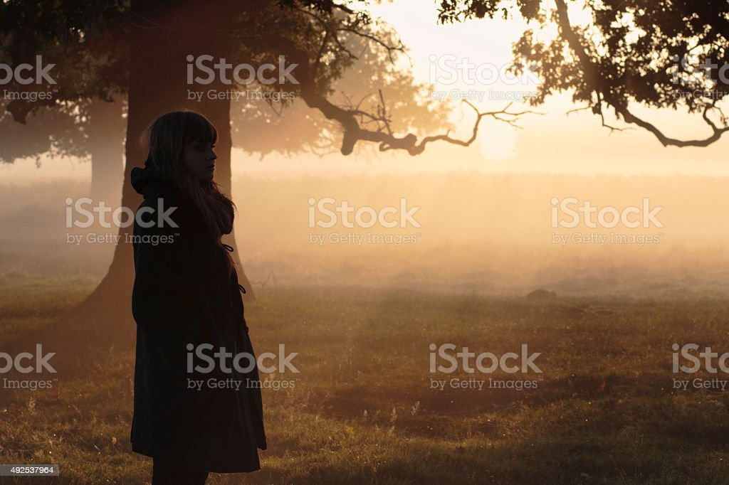 Profile Latvian outdoor girl model in foggy sunbeams stock photo